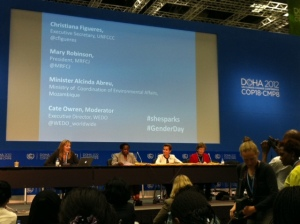 Gender Innovation Panel.